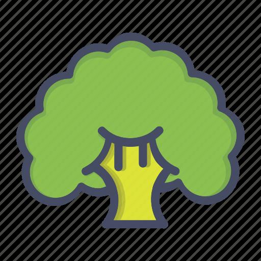 broccoli, cauliflower, fibre, food, healthy, vegetable icon