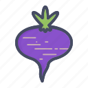 beet, plant, root, turnip, vegetable icon