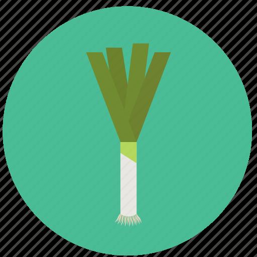 food, leech, organic, vegetable icon