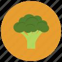 brocolli, food, organic, vegetable icon