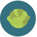cabbage, food, organic, vegetable icon
