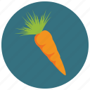 carrot, food, fruits, vegetables icon