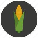 corn, food, organic, vegetable icon