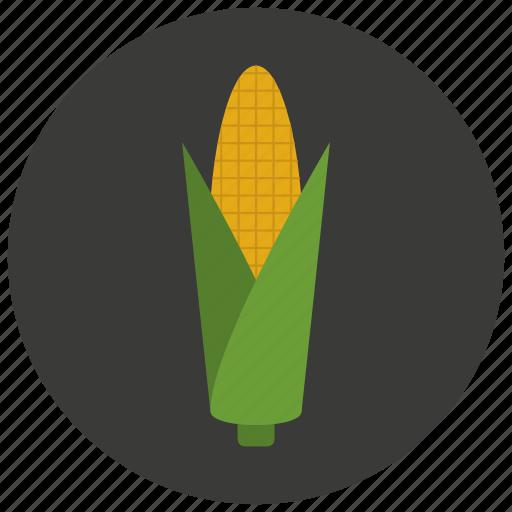 corn, food, organic, vegetable icon