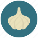 food, garlic, organic, vegetable icon