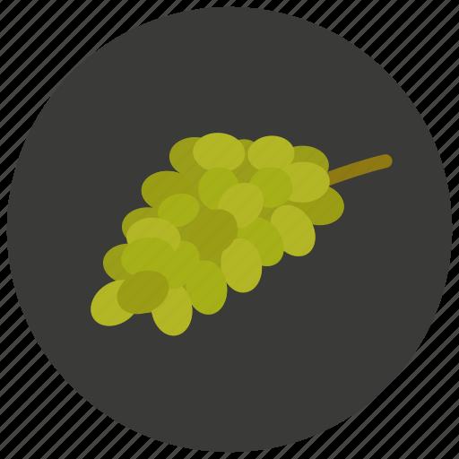 food, fruit, grapes, organic icon