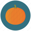 food, organic, pumpkin, vegetable icon