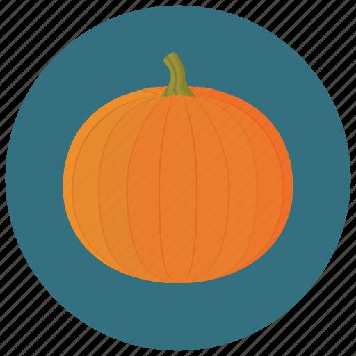 food, organic, pumpkin, vegetable icon