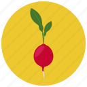 food, organic, radish, vegetable icon
