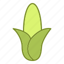 corn, food, fruits and vegetables, kitchen, vegetable icon