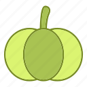 food, fruits and vegetables, halloween, pumpkin, vegetable icon