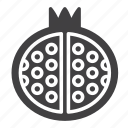 fruit, pomegranate icon