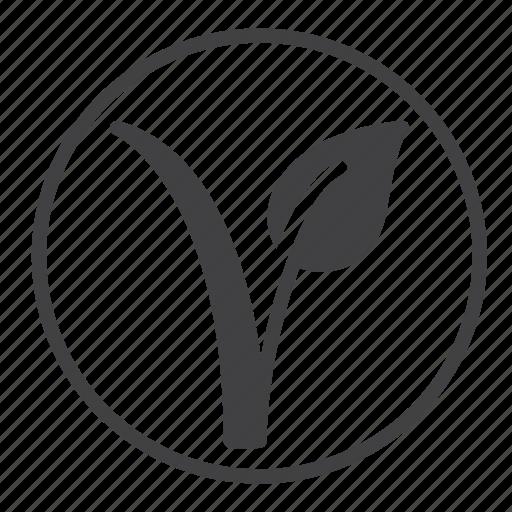 bio, blant, mark, vegetarian icon