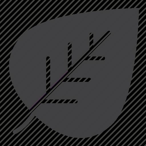 eco, green, leaf icon