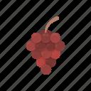 vitamins, grapes, fruit, dessert, plant, food, purple grapes icon