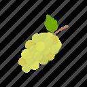 vitamins, grapes, fruit, dessert, plant, food, green grapes icon