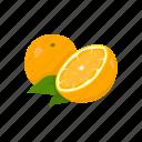 citrus fruit, dessert, orange, plant, vitamins icon