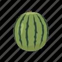 juice, dessert, plant, health, watermelon