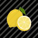 fruit, citrus juice, beverage, lemon, vitamin c, plant