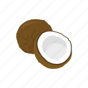 coconut, fruit, dessert, plant, beverage, coconut palm, health