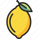 citron, citrus, fruit, lemon, lime icon