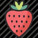 fragaria, fruit, strawberry icon