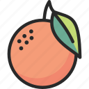 citrus, fresh, fruit, orange icon