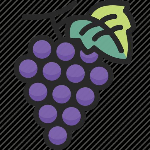 fresh, fruit, grape, grapes icon