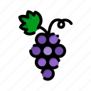 fresh, fruit, fruits, grapes, natural icon