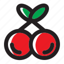 berry, cherries, cherry, fruit, healthy