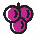 berry, food, fruit, grape, grapes, vine, wine icon