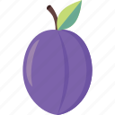 fresh, fruit, plum icon