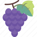 fresh, fruit, grape, grapes icon