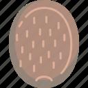 fruit, kiwi, kiwifruit, tropical icon