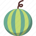 cantaloupe, fruit, melon, watermelon icon