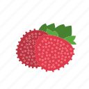 farm, food, fruit, mock strawberry, nature, organic icon