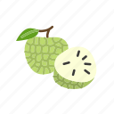 custard apple, farm, food, fruit, nature, organic icon