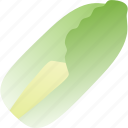 cabbage, chinese, food, healthy, vegetable, vegetarian icon