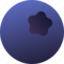 berry, blueberries, food, fruit, healthy, vegetarian icon