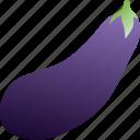 eggplant, food, healthy, vegetable, vegetarian icon