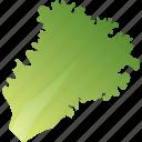 food, greenery, healthy, lettuce, vegetarian icon