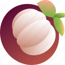 berry, food, fruit, healthy, mangosteen, vegetarian icon