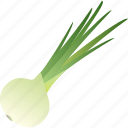 food, greenery, healthy, onion, spice, vegetable, vegetarian icon