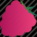 berry, food, healthy, raspberries, vegetarian icon