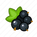 currant, sweet, fruit, black, berry icon
