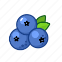 berry, blueberries, fruit, sour icon