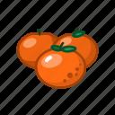 bone, fruit, mandarin, orange, sour icon