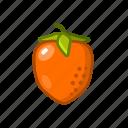bone, fruit, persimmon, sour