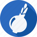 cooking, food, fruit, fruits, garlic, gastronomy, vegetable icon