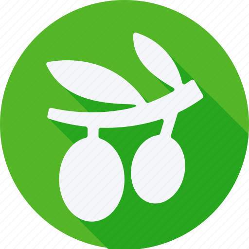 cooking, food, fruit, fruits, gastronomy, olive, vegetable icon